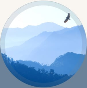 Vogel vor Bergkulisse